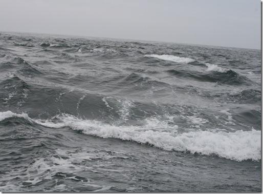 Opprørt hav